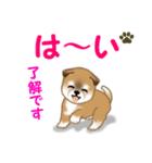 よちよち秋田犬 毎日優しいスタンプ(個別スタンプ:10)