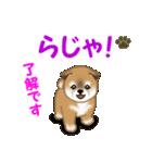 よちよち秋田犬 毎日優しいスタンプ(個別スタンプ:11)