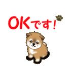 よちよち秋田犬 毎日優しいスタンプ(個別スタンプ:12)