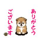 よちよち秋田犬 毎日優しいスタンプ(個別スタンプ:13)