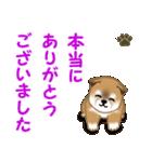 よちよち秋田犬 毎日優しいスタンプ(個別スタンプ:14)