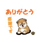 よちよち秋田犬 毎日優しいスタンプ(個別スタンプ:15)
