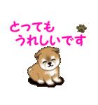 よちよち秋田犬 毎日優しいスタンプ(個別スタンプ:17)
