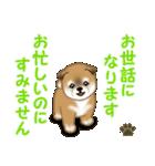 よちよち秋田犬 毎日優しいスタンプ(個別スタンプ:21)