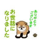 よちよち秋田犬 毎日優しいスタンプ(個別スタンプ:22)