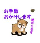 よちよち秋田犬 毎日優しいスタンプ(個別スタンプ:23)