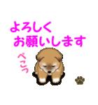 よちよち秋田犬 毎日優しいスタンプ(個別スタンプ:24)