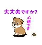 よちよち秋田犬 毎日優しいスタンプ(個別スタンプ:26)