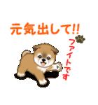 よちよち秋田犬 毎日優しいスタンプ(個別スタンプ:27)