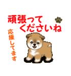 よちよち秋田犬 毎日優しいスタンプ(個別スタンプ:28)