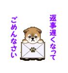 よちよち秋田犬 毎日優しいスタンプ(個別スタンプ:31)