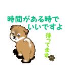 よちよち秋田犬 毎日優しいスタンプ(個別スタンプ:35)