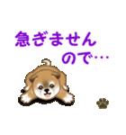 よちよち秋田犬 毎日優しいスタンプ(個別スタンプ:36)