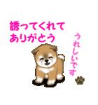 よちよち秋田犬 毎日優しいスタンプ(個別スタンプ:37)