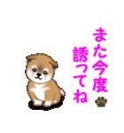 よちよち秋田犬 毎日優しいスタンプ(個別スタンプ:38)