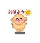 動く♪かわいい♥トイプードル(個別スタンプ:05)