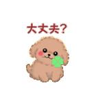 動く♪かわいい♥トイプードル(個別スタンプ:09)
