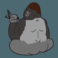 サル、ゴリラ、チンパンジー ♪ by JMC