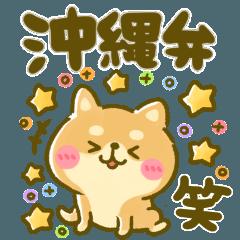 毎日豆柴♡よく使う沖縄弁。