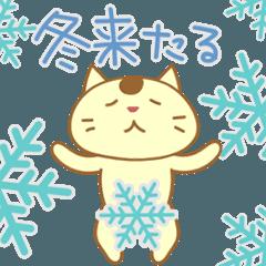 冬ねこ来たる