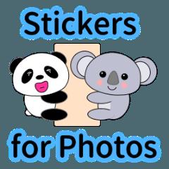 写真用「パンダ」と「コアラ」のスタンプ
