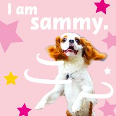 サミー君 その1