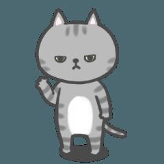 目つきの悪い猫ちゃん