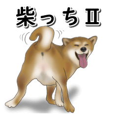 [LINEスタンプ] 柴っちⅡの画像(メイン)