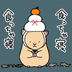 ハムチュんず【冬】