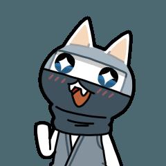 子猫忍者「シロカブ 」冬