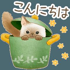 使いやすい☆猫たちのスタンプ