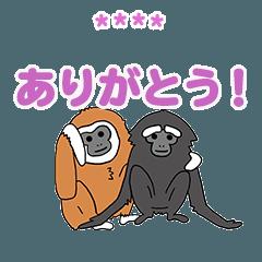 サル、ゴリラ by JMC 2【カスタム】