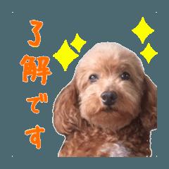 ペコちゃん・メイちゃんスタンプ