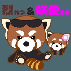 """レッサーパンダ """"烈&咲愛"""" 日常のひとコマ"""