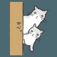 汎用性の高い猫