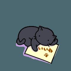日常使い 黒猫R