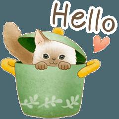 英語☆猫たちのスタンプ
