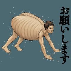 カメの甲羅はあばら骨・人体で表す動物