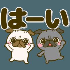 デカ文字♡黒パグちゃん