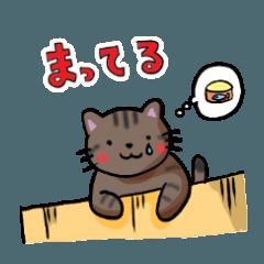 猫と涙 02