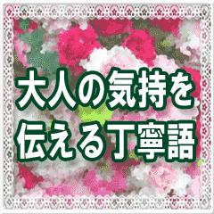 ▷花♥大人の気持ちを伝える丁寧語♥お祝い