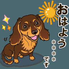 [LINEスタンプ] 気軽にダックス(チョコタン)【カスタム】 (1)