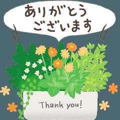 ありがとう&おつかれさま