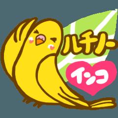 幸せの黄色いインコ