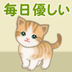 [LINEスタンプ] ちび猫5 毎日優しいスタンプ