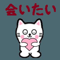 [LINEスタンプ] 白いねこ6 願望編