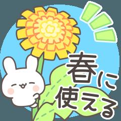 春が来た!毎日うさぎ日和