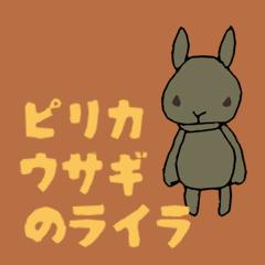 ピリカウサギのライラ
