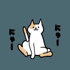 にゃーにゃー【猫】2