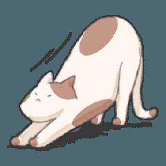かわいい茶白のぶち猫のスタンプ
